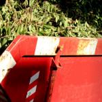 garden waste skip hire